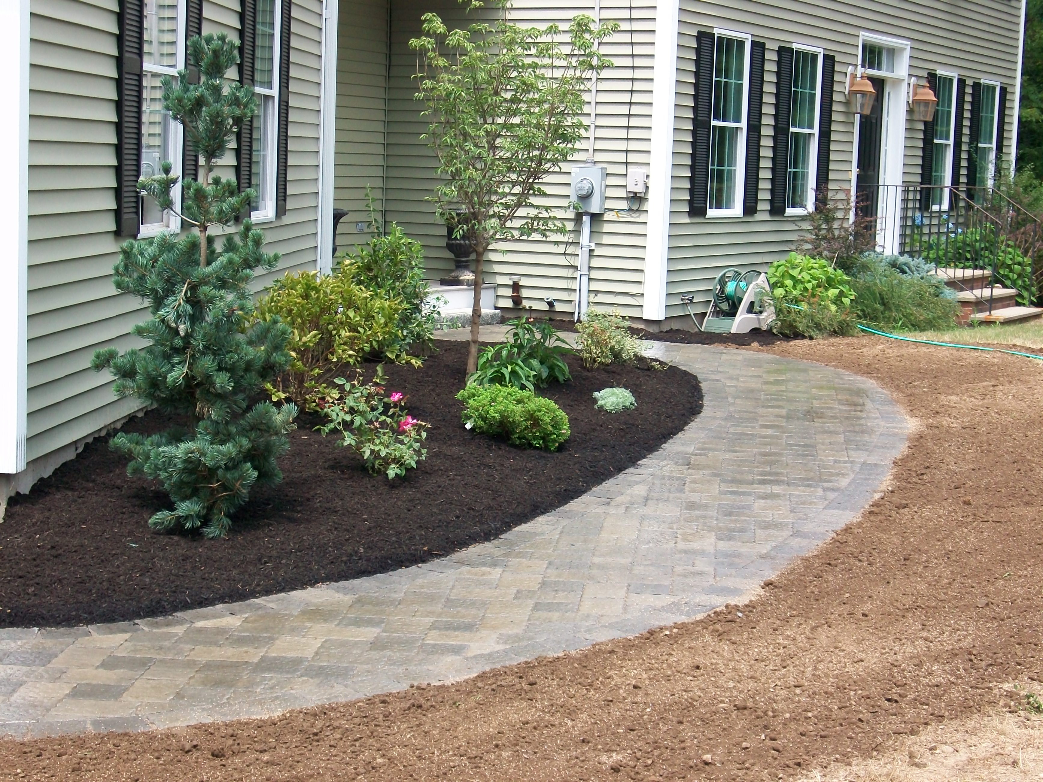 Image gallery walkway plants for Plants for walkway landscaping ideas